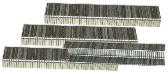 Imagem de AGRAFES 6 MM (CX. 2000)